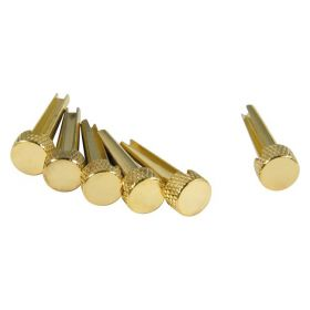D'Andrea TP1B Acoustic Guitar Tone Pins Gold Brass Bridge Pin Set, Solid Brass